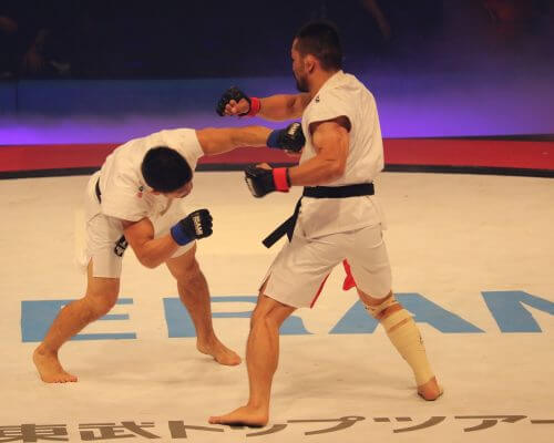 UFC CBD as neuroprotectant