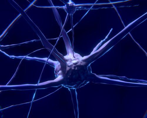 cbd-neuroprotection