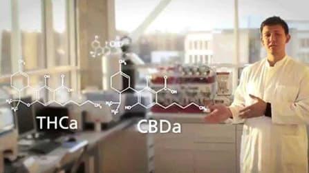 video explaining the chemistry