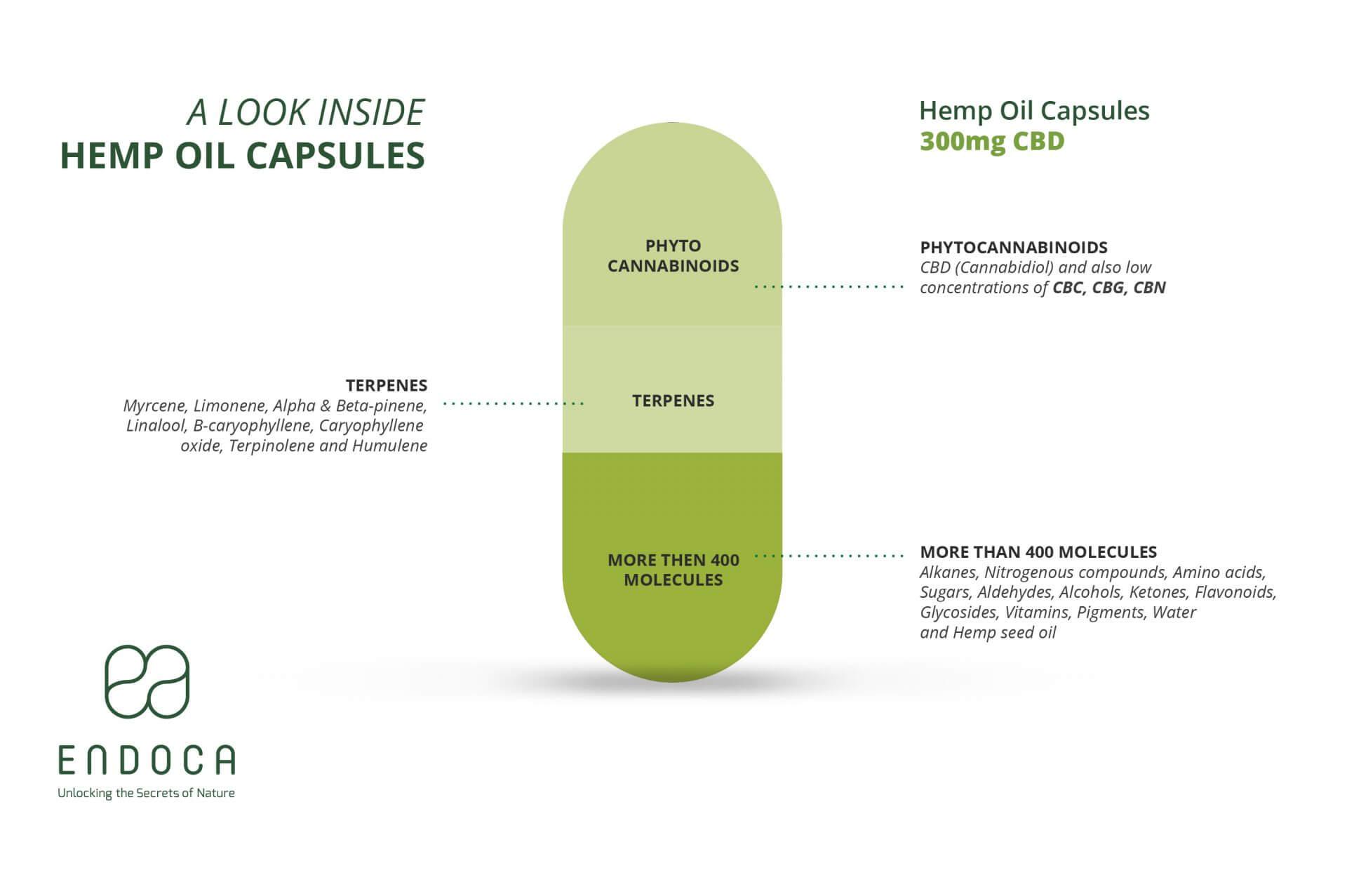 capsules infographic