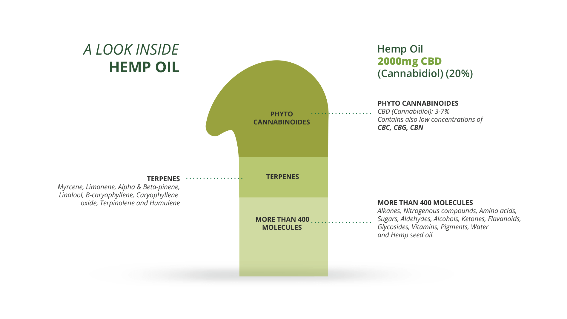 infographic cbd extract