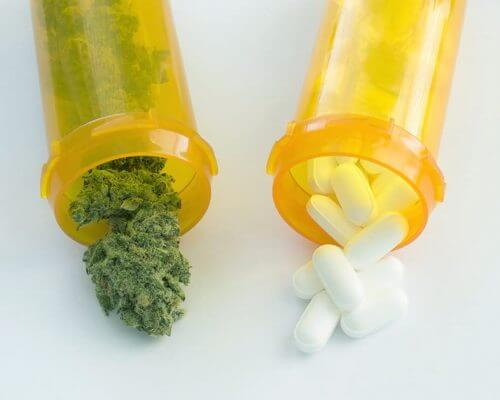 medical-cannabis-for-chronic-pain