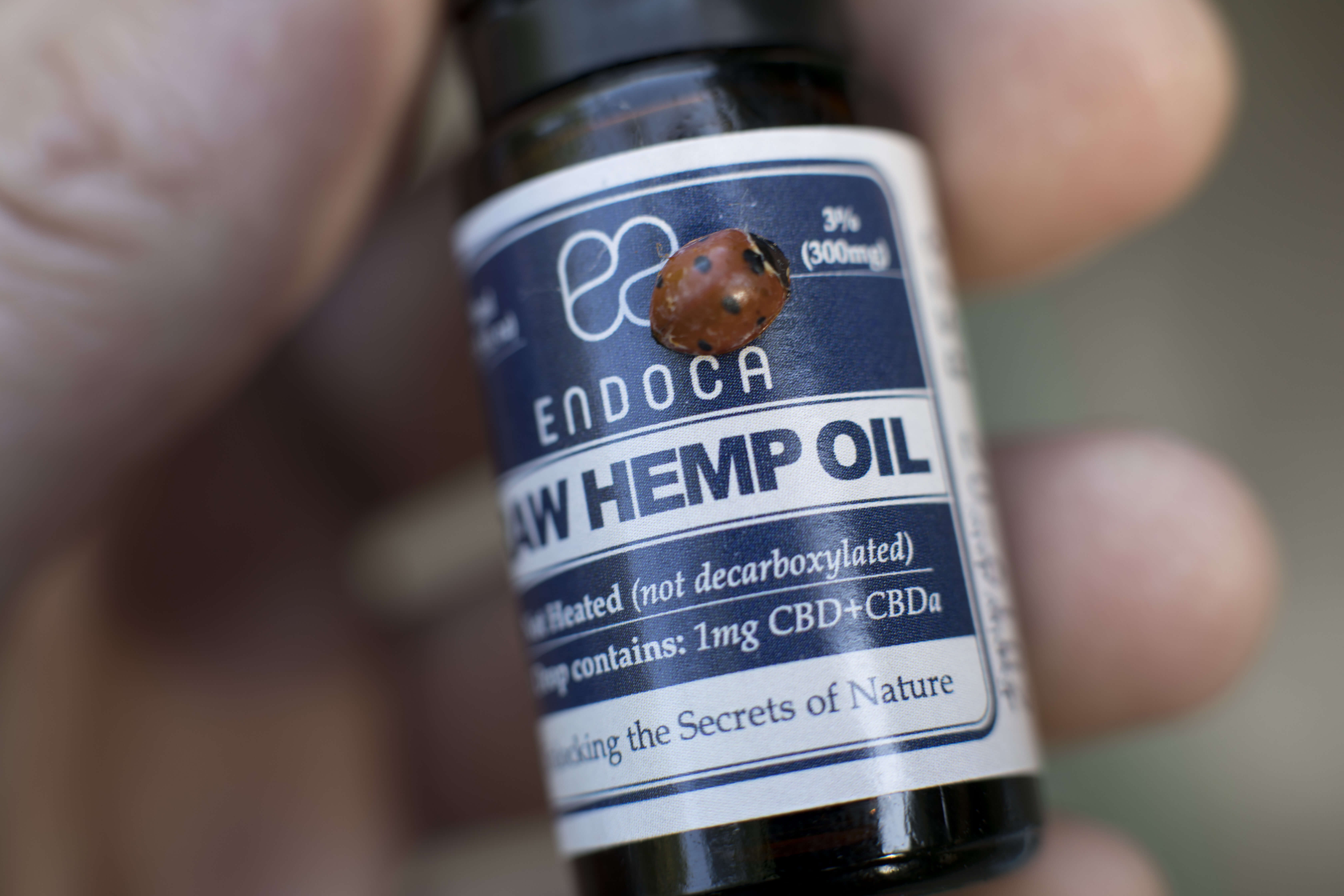 cbd-for-autism