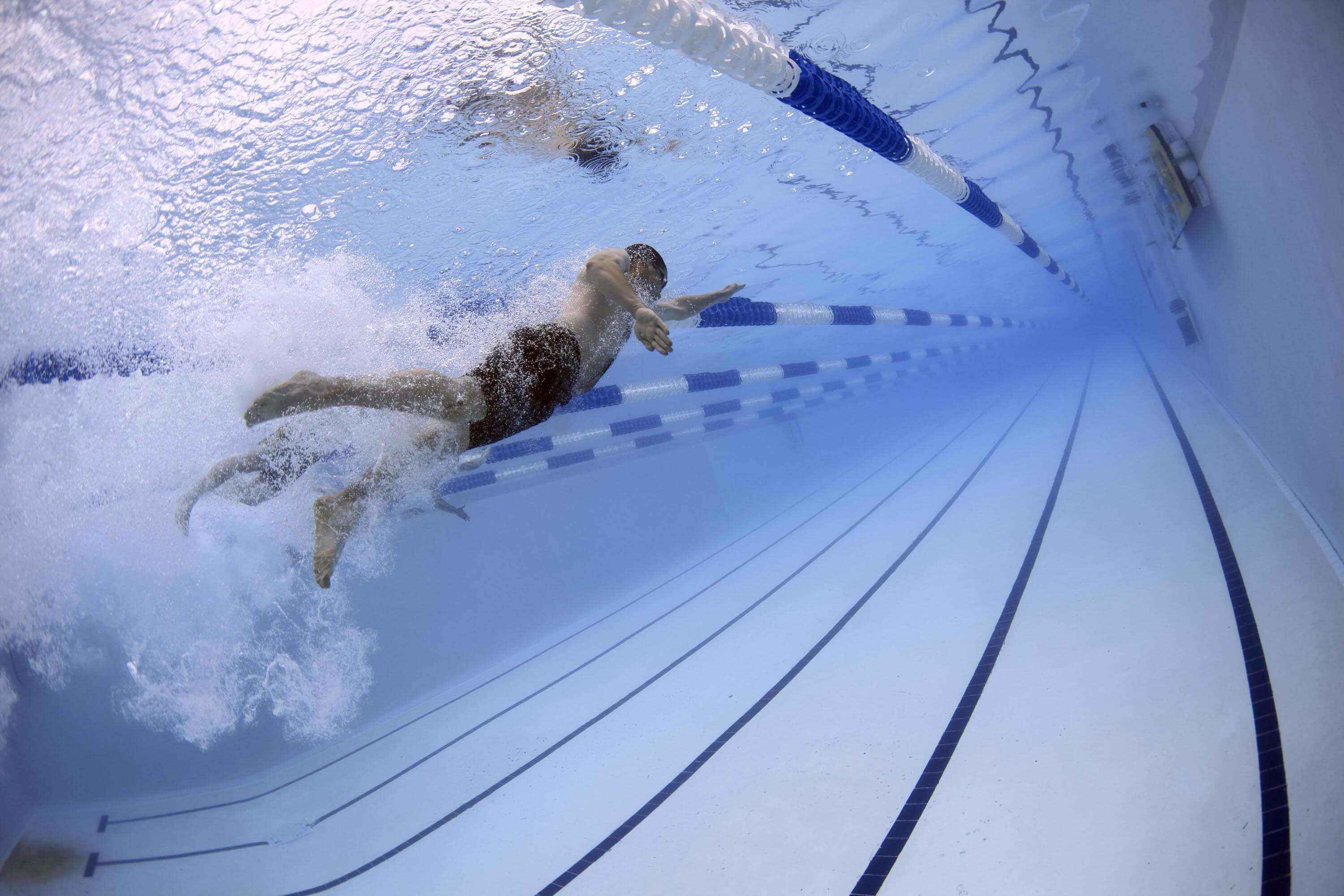 swimmers-in-pool