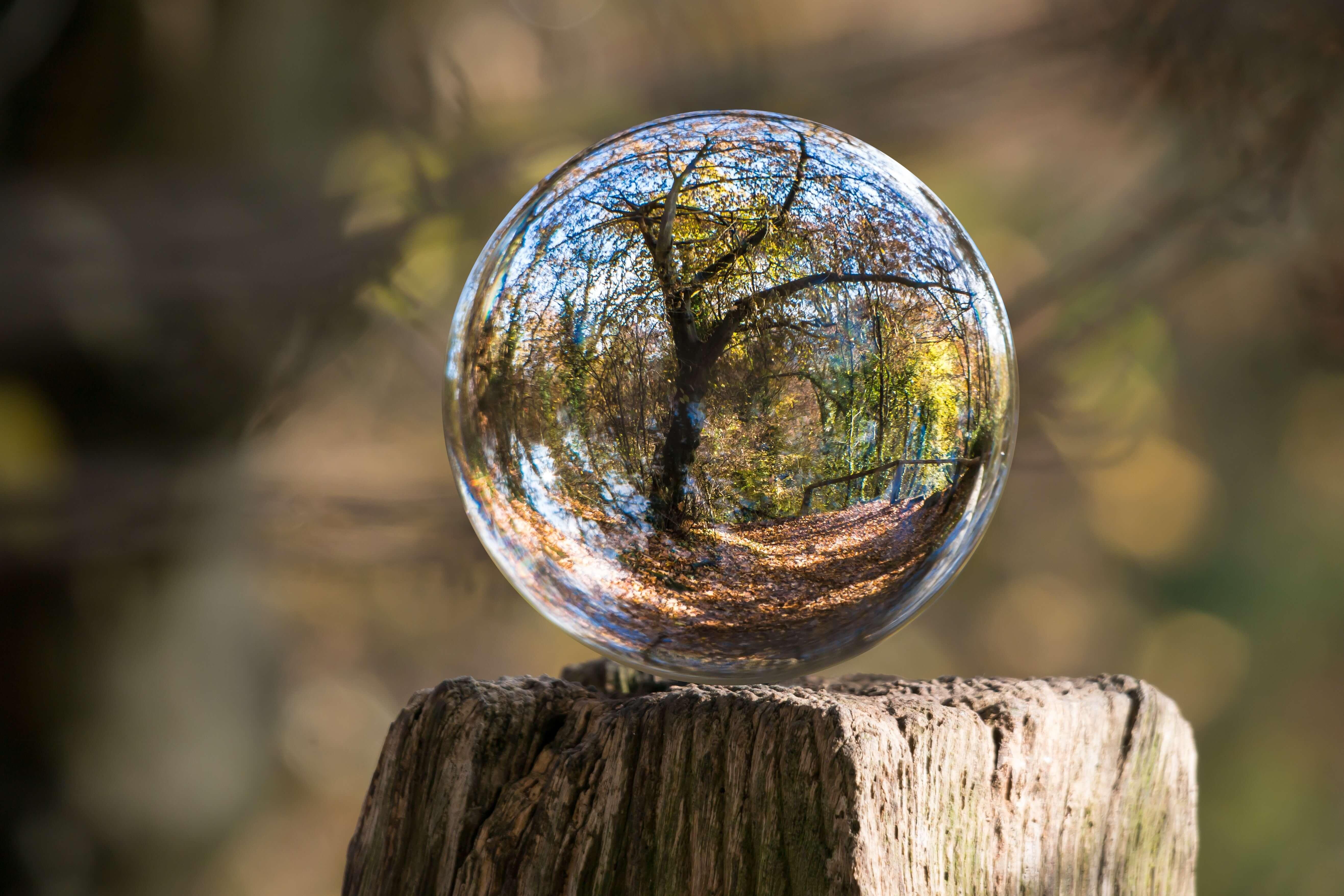 water-drop-ball-tree