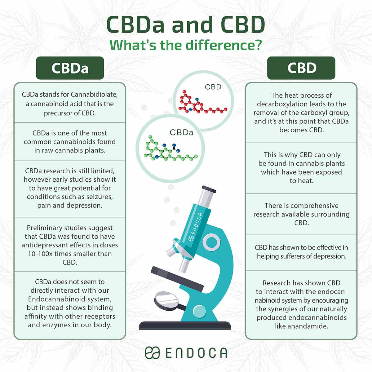 CBD vs CBDa infographic