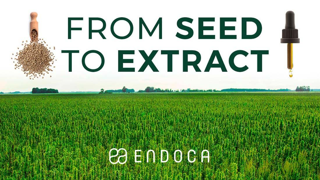 Endoca CBD extraction