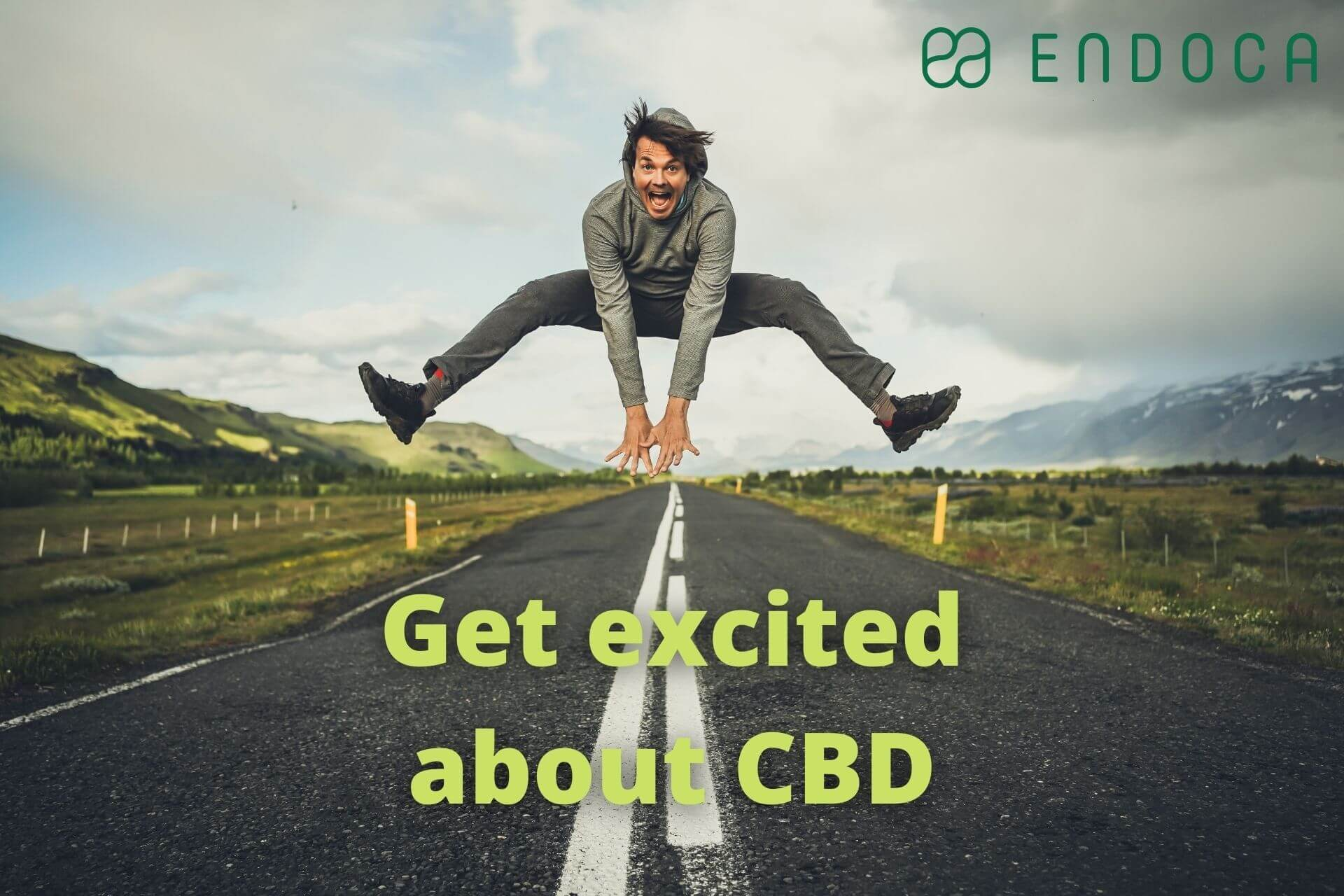 CBD experts roundup