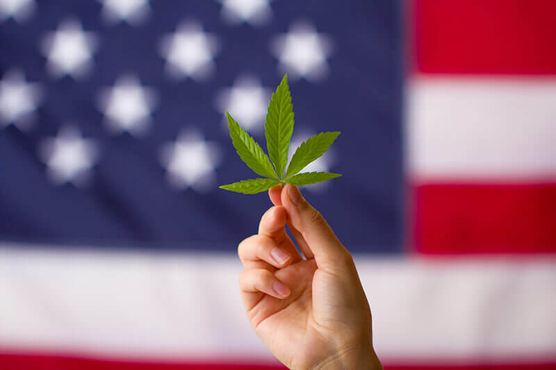 CBD fact-Hemp leaf in front of an American flag. Hemp is legal at a federal level in the USA, put not legal in Idaho, Iowa, and South Dakota