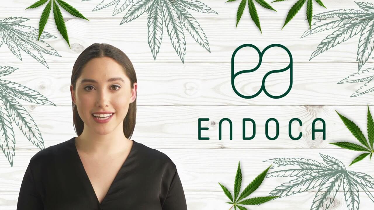 endoca banner