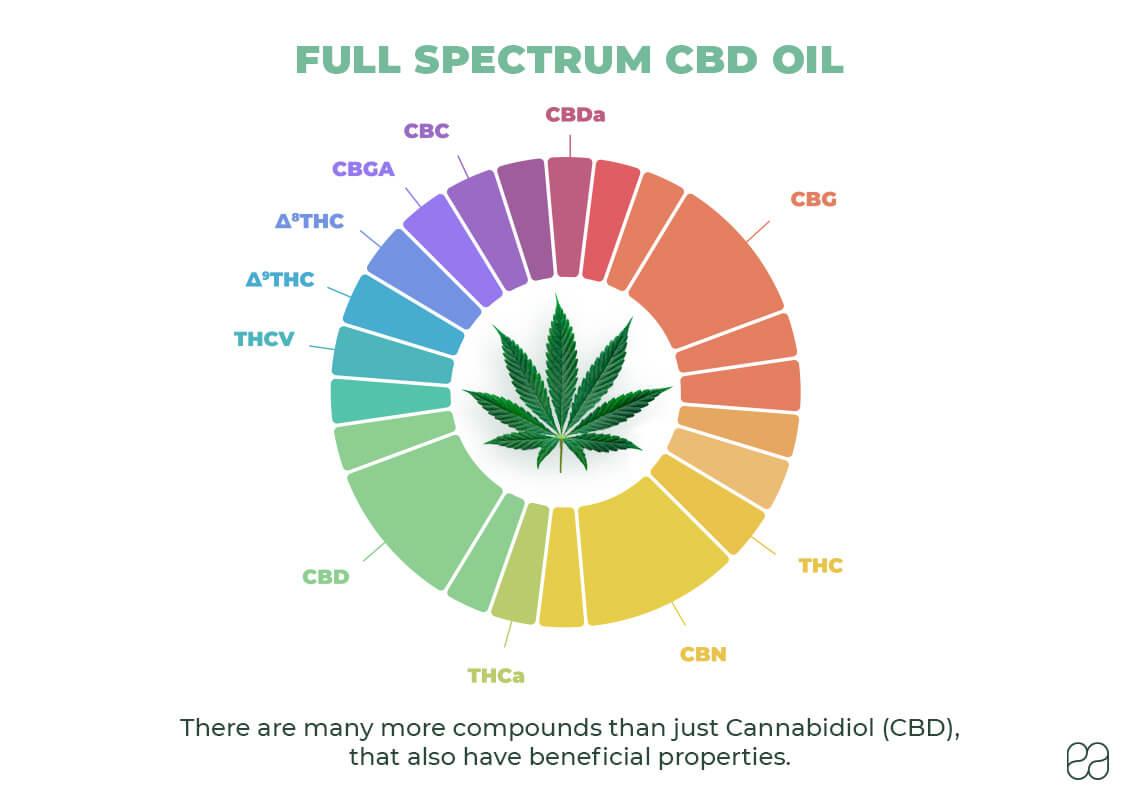 infographic about full spectrum CBD oil