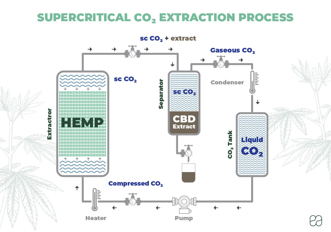infographic about how supercritical CO2 extraction is done