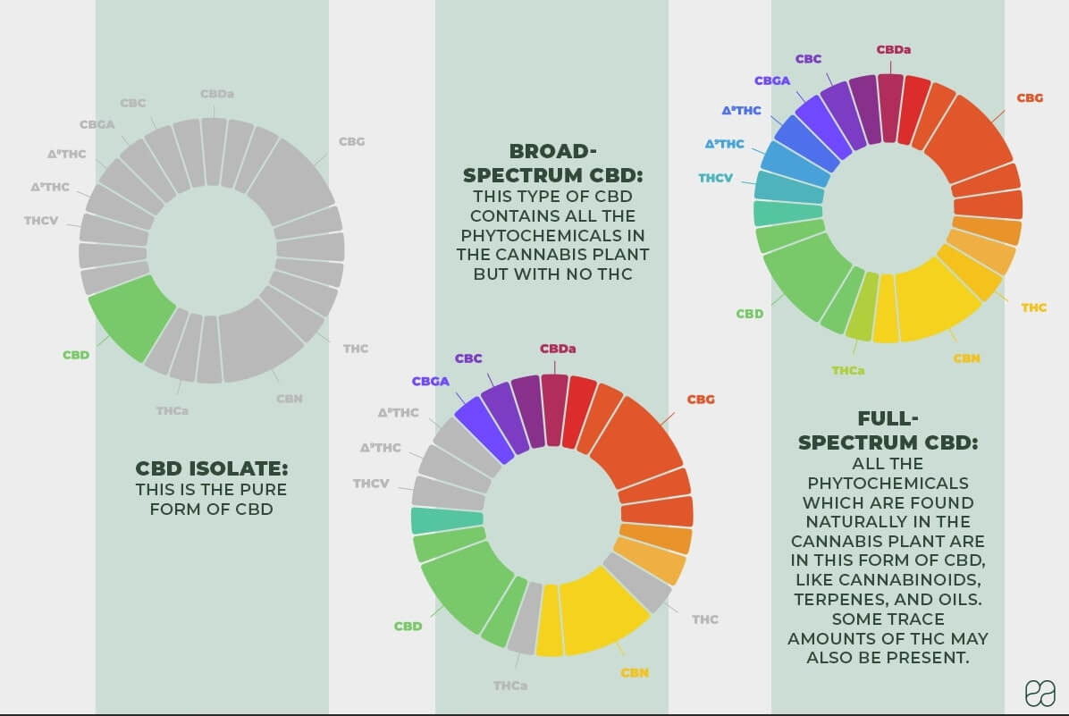 infographic on the differences between CBD isolate, broad spectrum , and full spectrum CBD