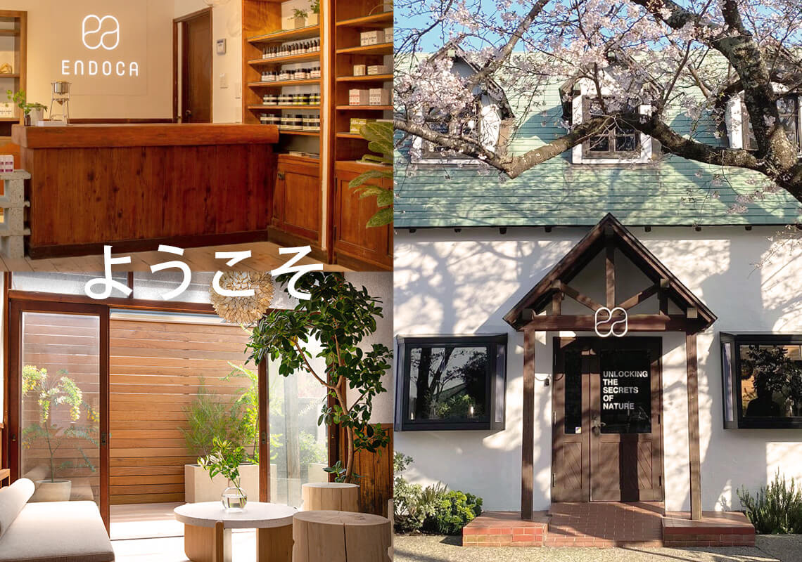 Endoca store in Japan with wooden interior