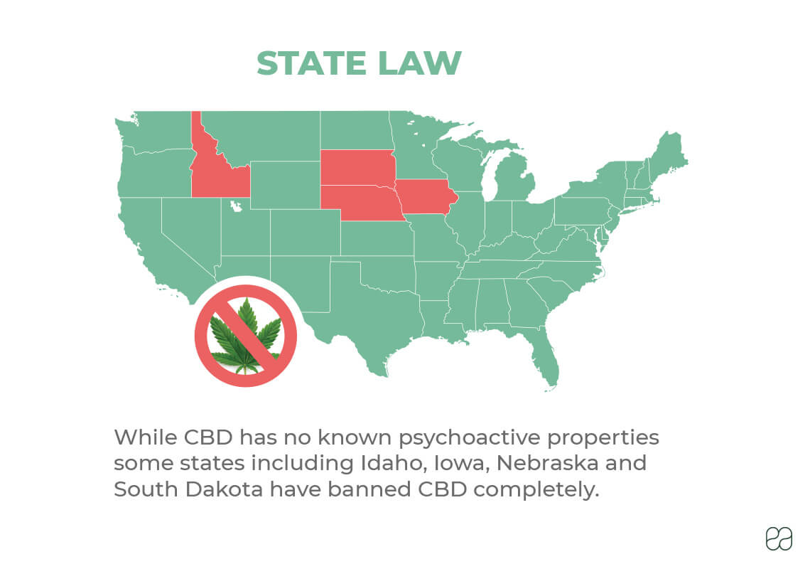 infographic of map of United States explaining where CBD is illegal